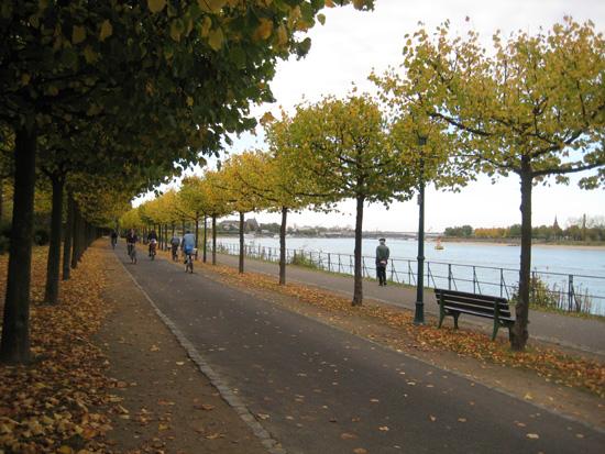 Nach Feierabend unterwegs am herbstlichen Rhein