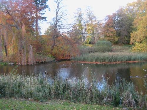 Schwanenteich / Swan Lake